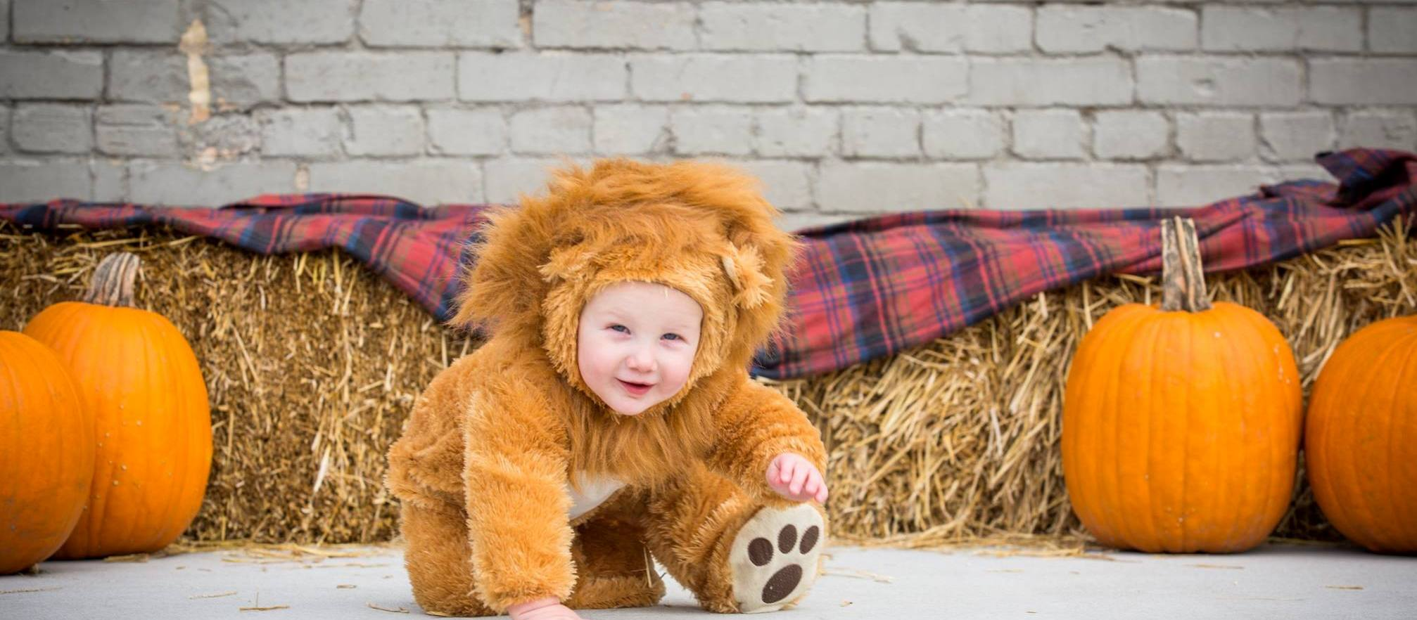 trick or treat 2015 lion.cropped