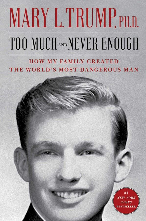 Too Much and Never Enough Book Cover